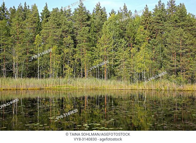 Reflections on small marshland lake on a sunny day of early autumn in Southwest of Finland