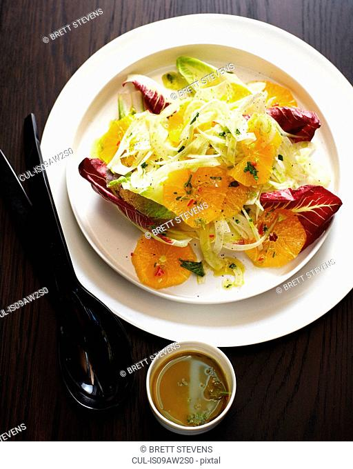 Overhead view of dish with fennel orange salad and dipping sauce