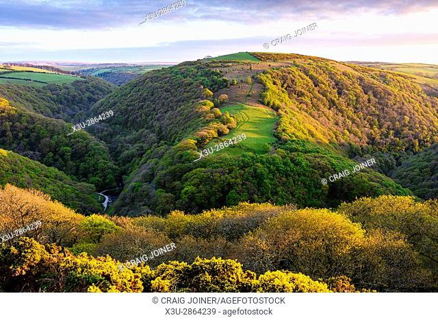 View over the East Lyn Valley in spring from South Hill Common in the Exmoor National Park, near Lynmouth, England