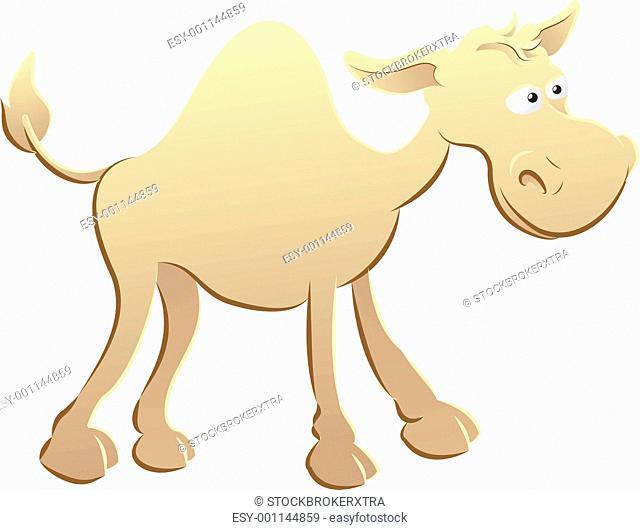 camel illustration