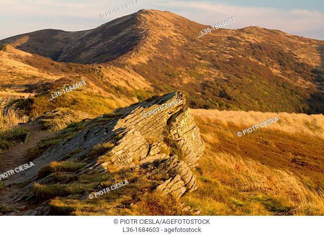 Bieszczady mountains  Poland  Bukowe Berdo in autumn