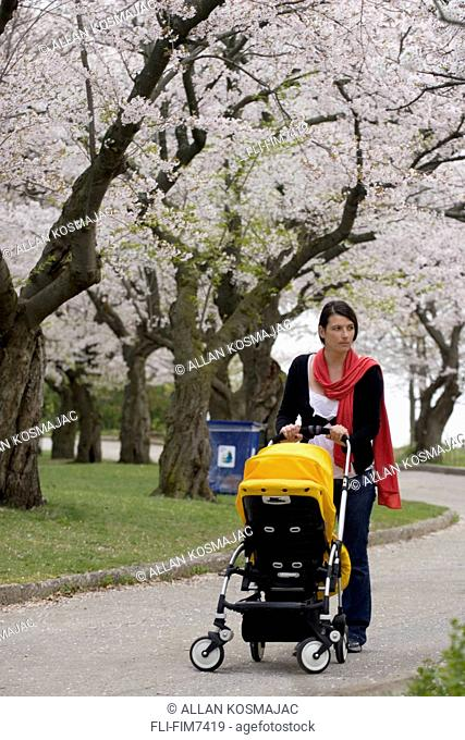 Woman walking stroller past cherry blossoms in High Park, Toronto, Ontario
