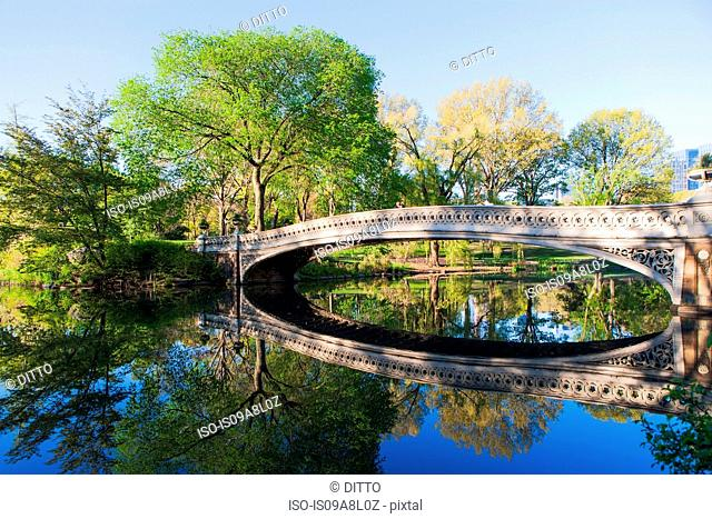 Bridge in Central Park, New York City, USA