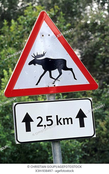 panneau routier indiquant le passage frequent d'elans,region de Saare,Estonie,pays balte,europe du nord