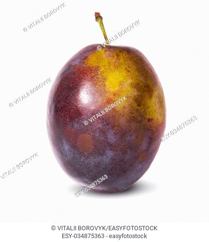 Single violet plum isolated on white background