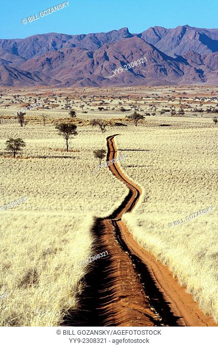 Road in Wolwedans - NamibRand Nature Reserve - Hardap Region, Namibia, Africa
