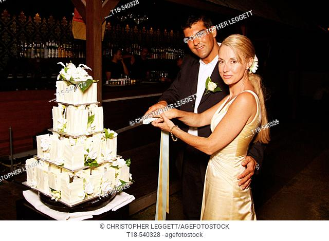 wedding couple slicing cake