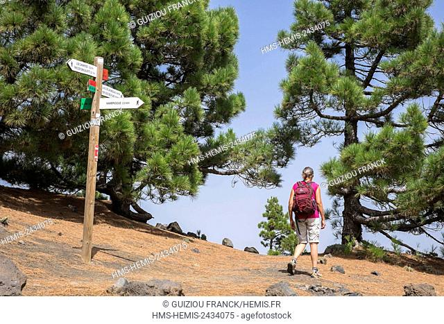Spain, Canary Islands, La Palma island declared a Biosphere Reserve by UNESCO, Cumbre Vieja Natural Park, on the hiking path the Volcanic Route, GR 131