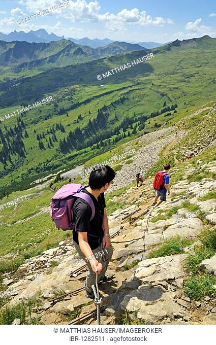 Trail secured by ropes and struts down from Hoher Ifen Mountain, Vorarlberg, Allgaeu Alps, Austria, Europe