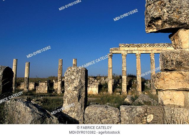 Syria - Apamea or Qalaat al-Moudiq