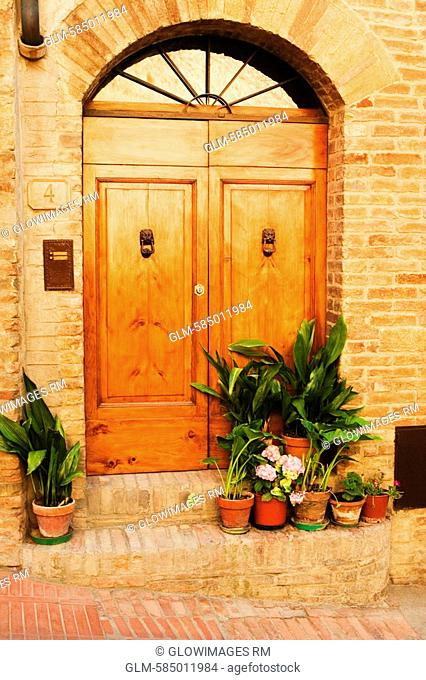 Potted plants outside a house, San Gimignano, Siena Province, Tuscany, Italy