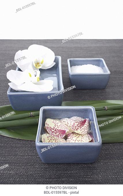still life of three blue bowls with orchids
