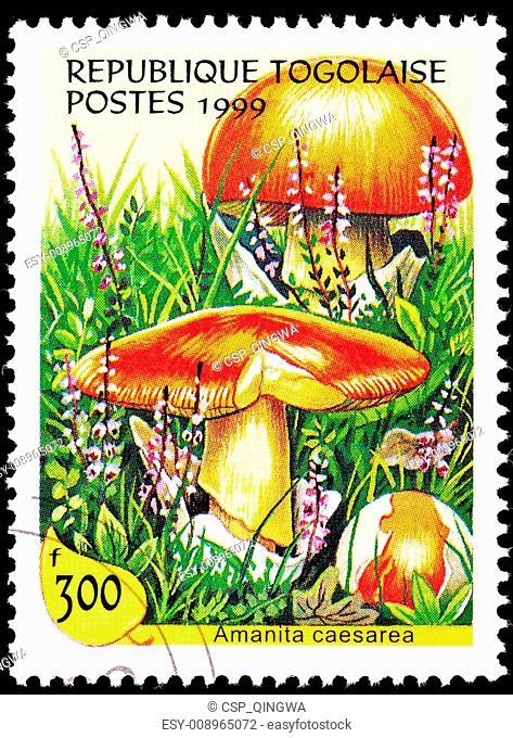 Canceled Togo Postage Stamp Caesar's Mushroom, Amanita Caesarea
