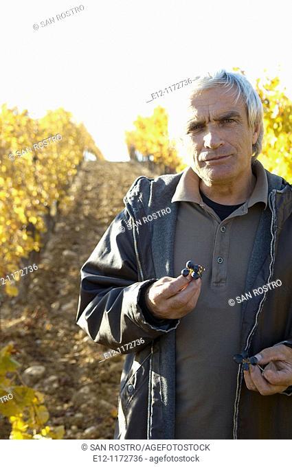 France, Vaucluse, Cairanne, winegrower Marcel Richaud, wine testing in vineyards of his 'côte du rhone village'