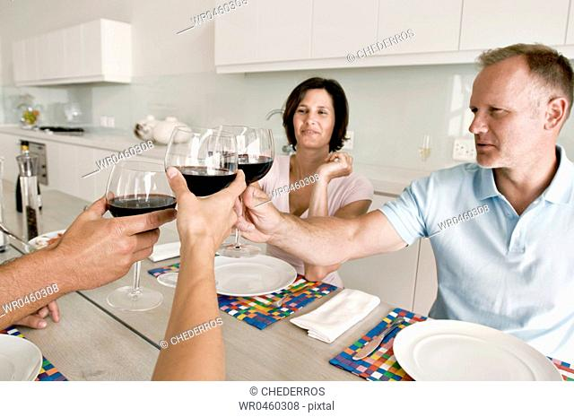 Mature couple toasting with wine glasses with their friends