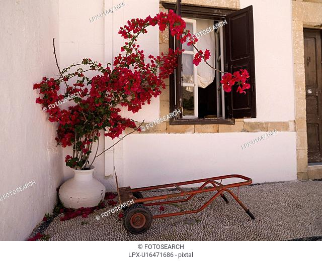 Planter with flowers in Rhodes Greece