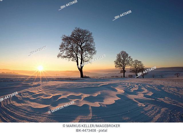 Winter landscape at sunset, Konstanz district, Baden-Württemberg, Germany
