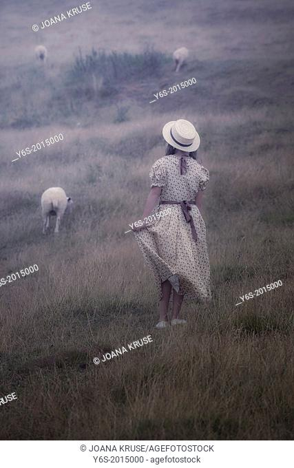 a girl in a vintage dress on a meadow with sheeps