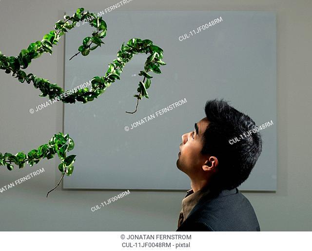 Man watching attacking plant