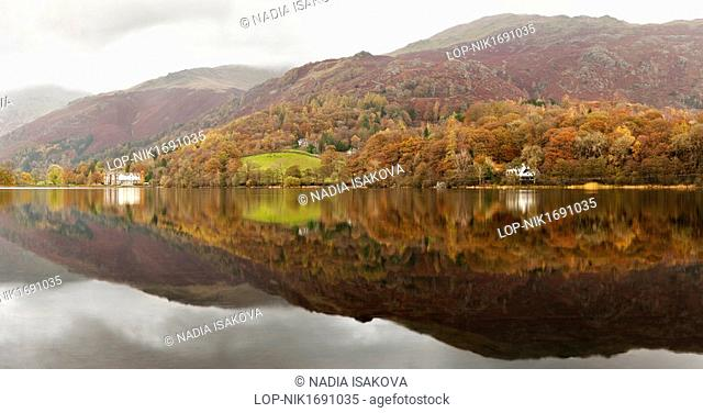 England, Cumbria, Grasmere. Autumnal colours on the surrounding hillside reflected in Grasmere lake in the Lake District