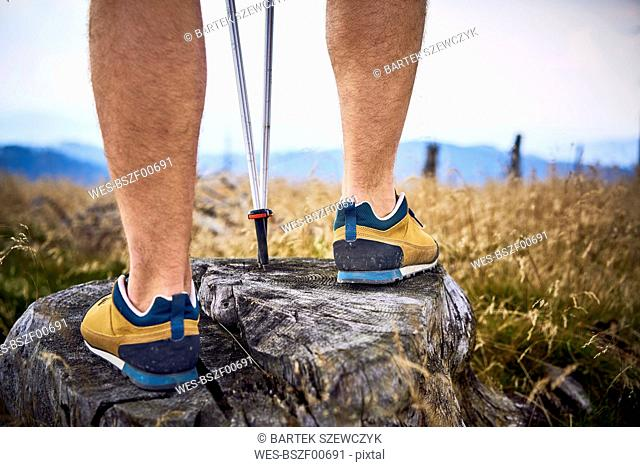 Close-up of man standing on tree stump during hiking trip
