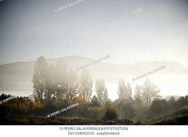 Sunrise with fog in the Pyrenees, Huesca Province, Aragon, Spain