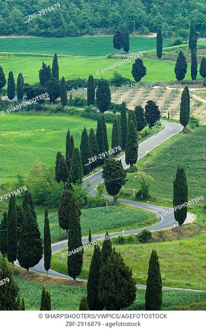 Road from Pienza to Montepulciano, Monticchiello, Val d'Orcia, Siena province, Tuscany, Italy