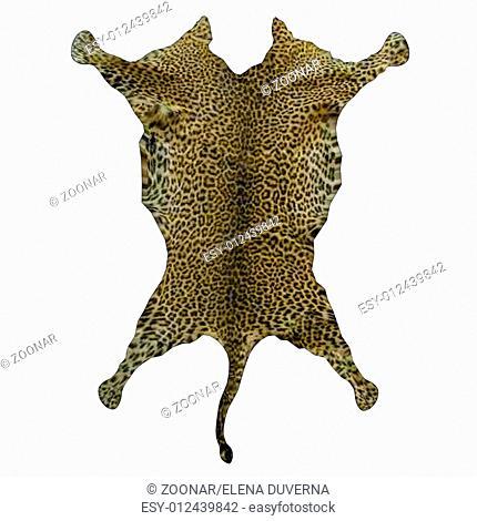 Leopard rug skin - 3D render