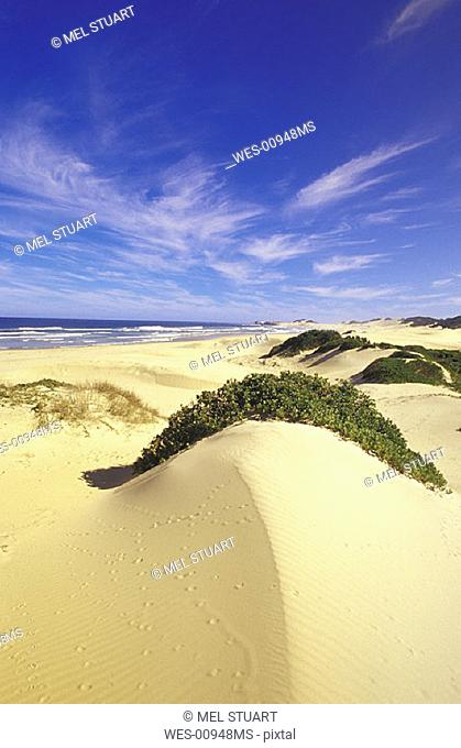 Sanddunes at Buchmans River Mouth, Port Alfred, Eastern Cape, South Africa