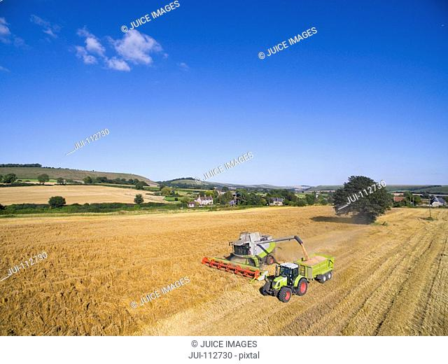 Aerial view combine harvester filling tractor trailer in sunny rural barley field