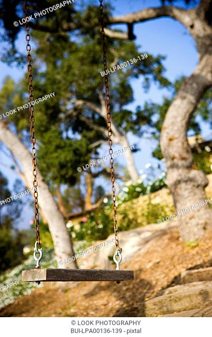 Wooden swing hanging from a large oak tree