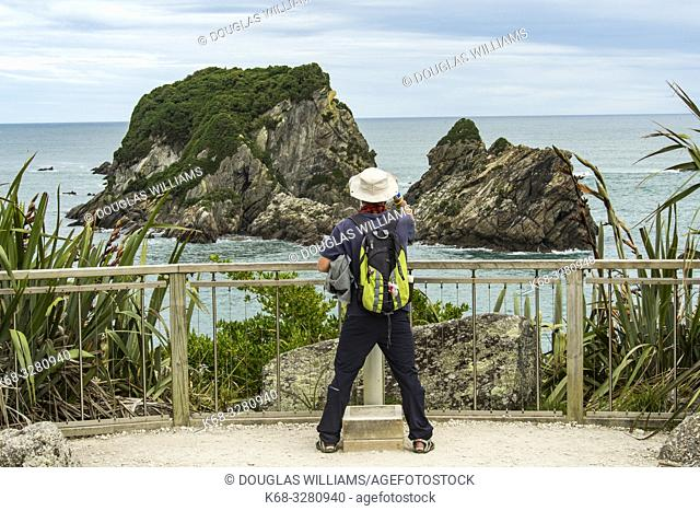 Wall Island, an important bird breeding ground, West Coast, South Island, New Zealand