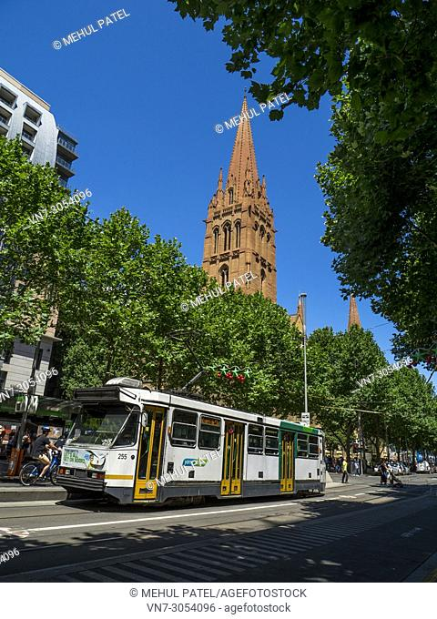 Tram travelling down Swanston Street in central Melbourne with tower of St. Paul's Cathedral above, Melbourne, Victoria, Australia