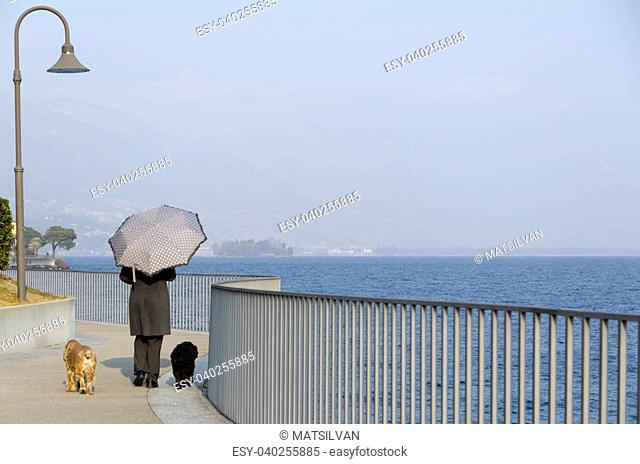 Woman with an umbrella walking on the lakefront with her two dogs and blue sky
