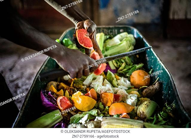 A worker of the Munda Wanga environmental park prepares fruit and vegetable mix for feeding animals, Lusaka, Zambia