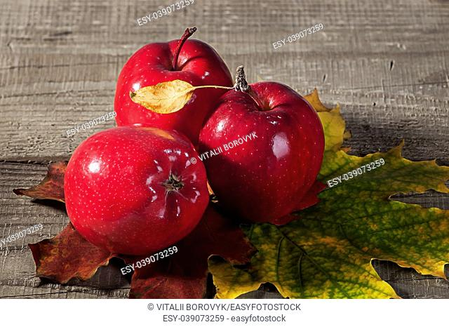 Red apples with maple leaves. Autumn yellow and maroon leaves on a wooden table