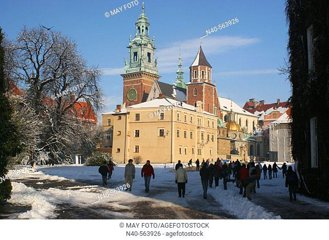Wawel Cathedral. Krakow. Poland