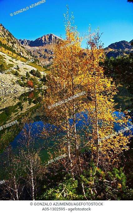 Estany Llong  Llong lake. Aigüestortes i Estany de Sant Maurici National Park, Pyrenees Mountains, Boi-Taull Valley. Alta Ribagorça, Lleida province, Catalonia