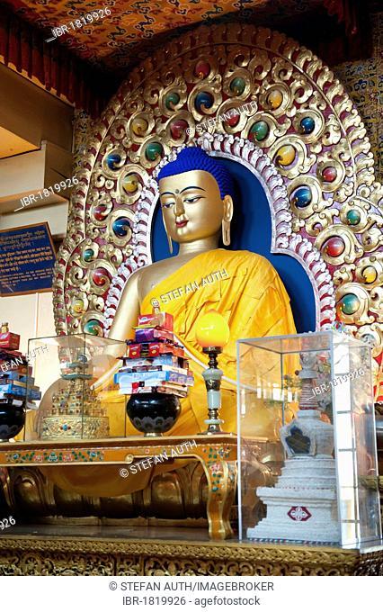 Tibetan Buddhism figure, Buddha figure on the altar of the Dalai Lama, Namgyal Monastery, Upper Dharamsala, McLeod Ganj, Himachal Pradesh, India, South Asia