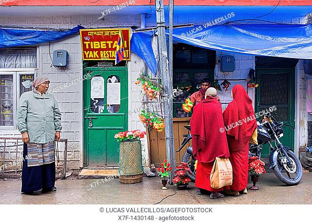 Street scene in Jogibara street ,McLeod Ganj, Dharamsala, Himachal Pradesh state, India, Asia
