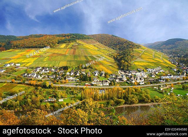 Enkirch an der Mosel Edelberg