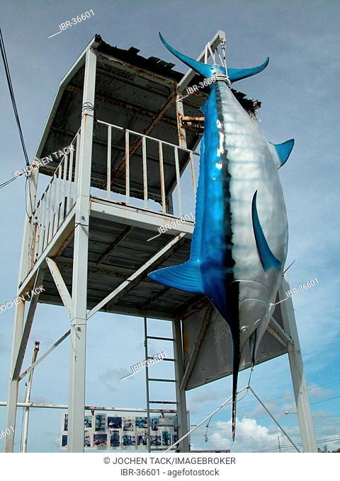 USA, Florida, Miami Beach: Model of a caught Marlin at the fishing harbor