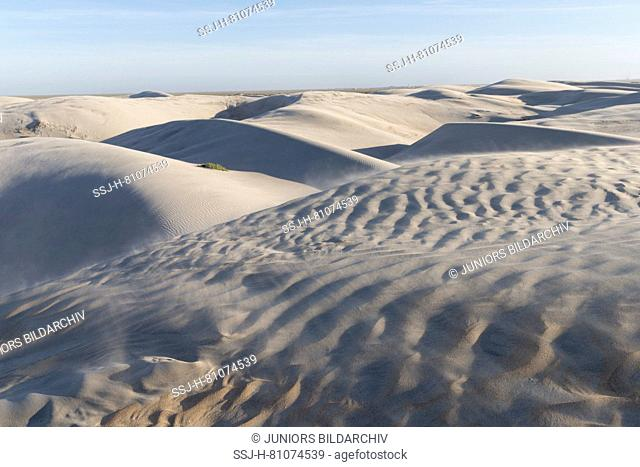 Sand dunes of Dunas de Soledad. Central America, Mexico, Baja California Sur, Guerrero Negro