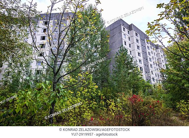 Overgrown street in Pripyat ghost city of Chernobyl Nuclear Power Plant Zone of Alienation around nuclear reactor disaster in Ukraine