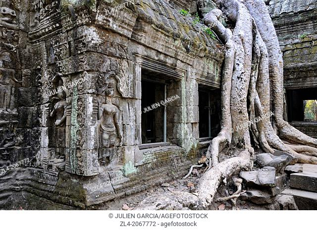 Giant tree roots over a building at Ta Promh temple, built end of 12th century. Cambodia, Siem Reap, Angkor