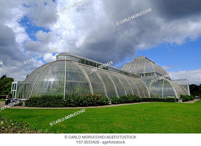 The Palm House at Kew Gardens, London, United Kingdom