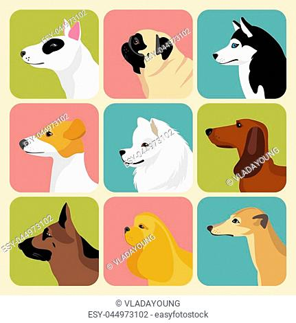 Vector set of different dogs icons in trendy flat style