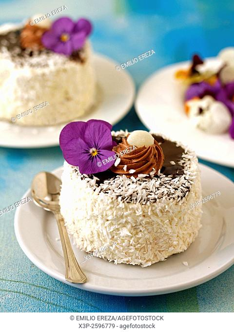 Chocolate sponge cake with coconut
