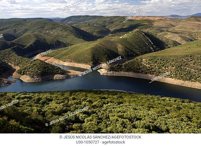 Overview of Tajo river, from Monfrague Castle, in Monfrague National Park  Biosphere Reserve  Cáceres province  Extremadura  spain