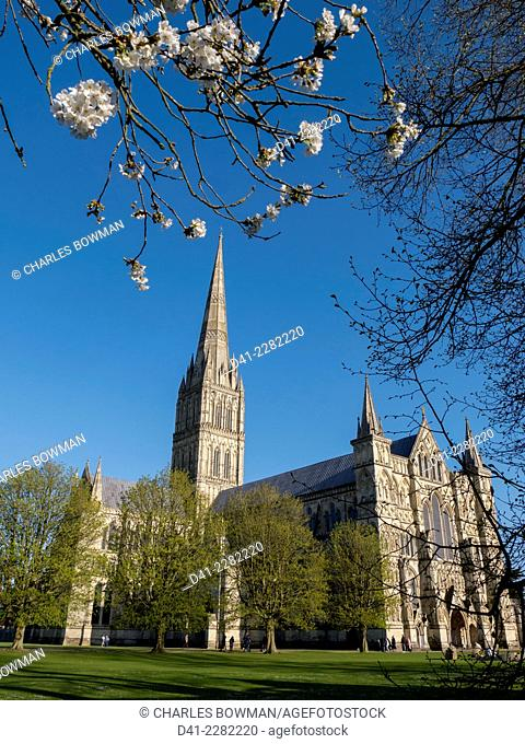 europe; UK, England, Wiltshire, Salisbury Cathedral